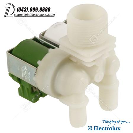 cap-nuoc-doi-electrolux